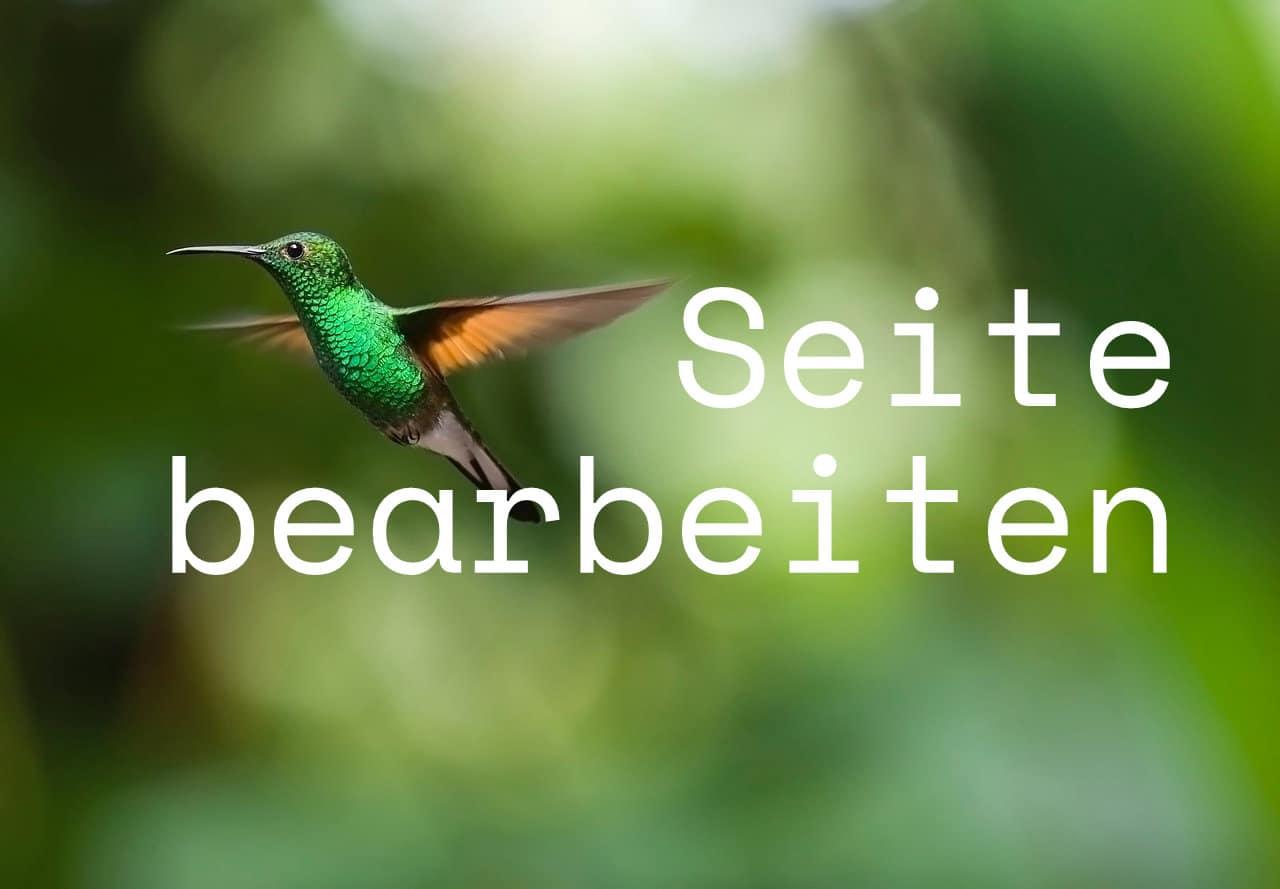 Seite bearbeiten - Kolibri Solutions